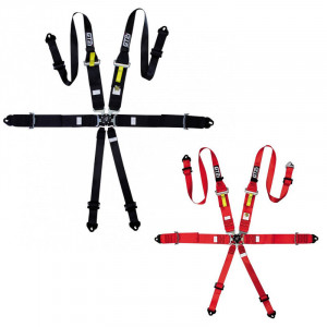 Pack 2 FIA 6 Points PRO Light Harnesses