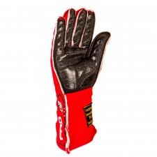 GT2i Pro 02 FIA gloves