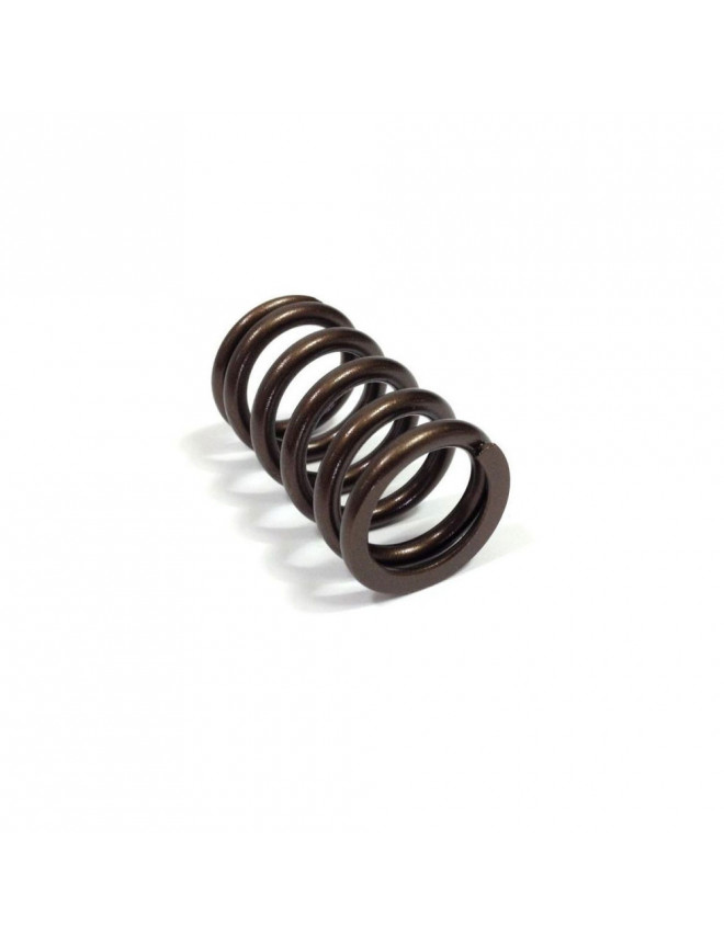 Cat Cams outer valve spring R5 Turbo (unit)