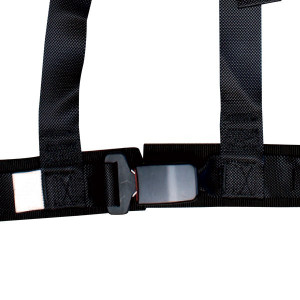 GT2i 3points Harness CEE 2""